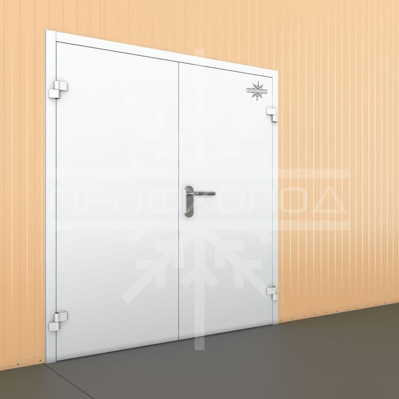 Технологическая дверь двухстворчатая
